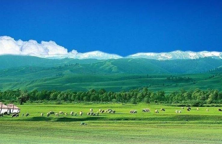 """内蒙古对急难型临时救助对象实行""""先行救助"""""""
