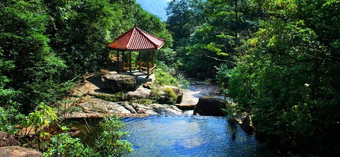 聚焦绿色发展 广州将新增19个近郊森林公园