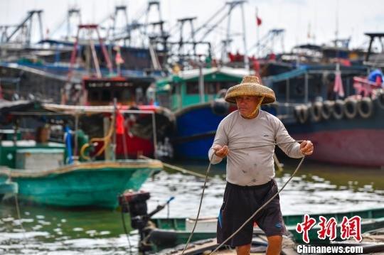 海南临高渔港:海洋大县的多样化渔业之路