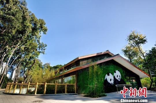 广州动物园大熊猫馆改造升级后对外开放