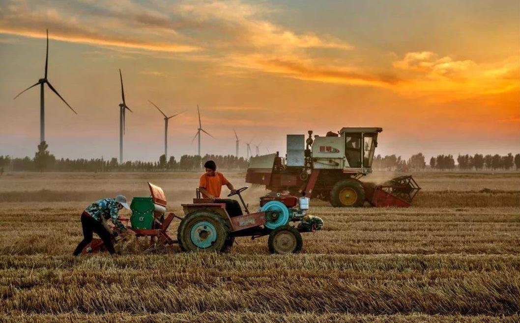 13277亿斤!2019年全国粮食总产量再创历史新高