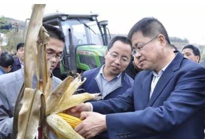 """山西阳城:农机装上""""智慧眼"""" 秸秆利用更高效"""