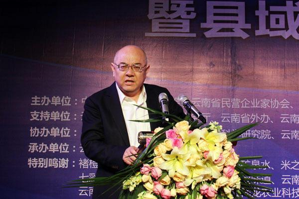 云南百县云品出滇活动暨县域品牌发展峰会在昆开幕