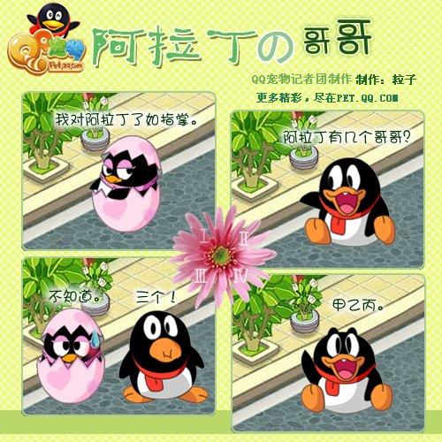 Q宠物超级可爱版面企鹅漫画_动漫_腾讯网