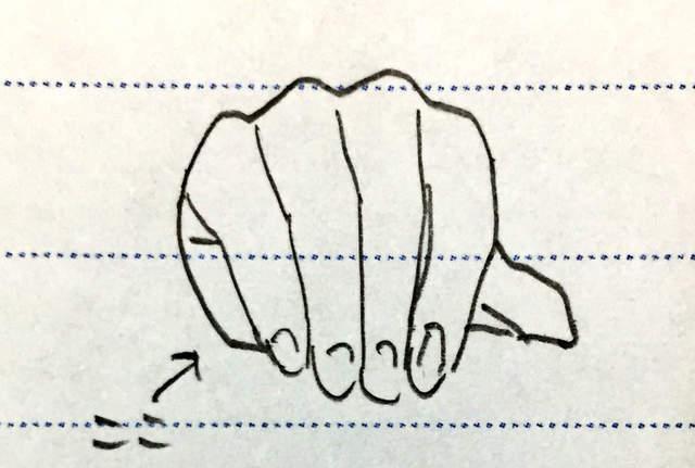 小栗旬究竟有几根手指? 《银魂》导演发推澄清谣言