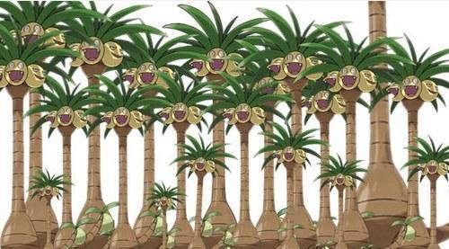 《精灵宝可梦太阳/月亮》曝新情报 椰蛋树爆笑来袭