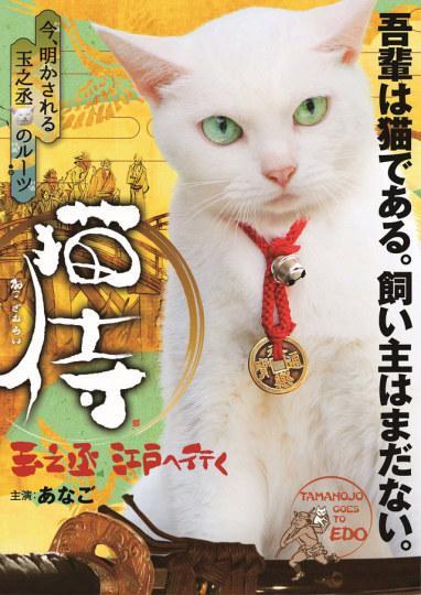 《猫侍》玉之丞江户之旅 SP剧2月播放