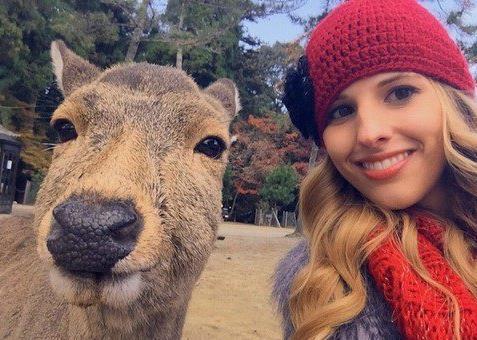 网友吐槽奈良鹿只对欧洲人热情