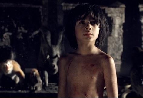 《奇幻森林》特效将由《少年派》团队打造