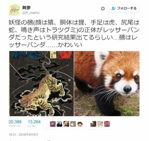 传说的幻灭 传说中的鵺竟然是只小熊猫