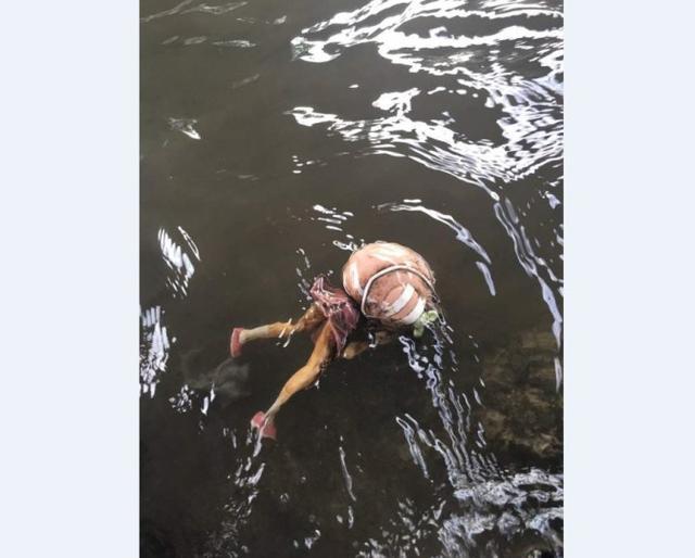 """漆黑的瞳孔太瘆人!岛国网友在河中发现恐怖""""邪神"""""""