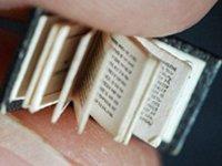 最小的书图片