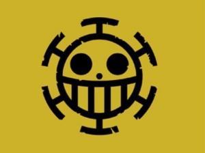 草帽团呢?日网友票选最喜欢的海贼旗
