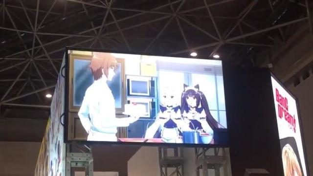 艹猫动画《NEKOPARA》42分钟完成众筹