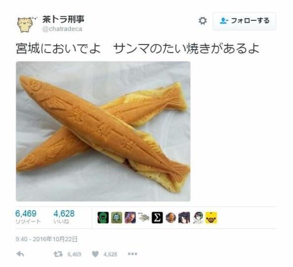 猫咪最想了解的滋味?日本推出秋刀鱼烧