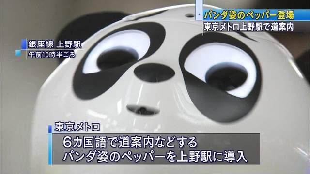"""熊猫""""烦人脸""""成画师最爱素材"""