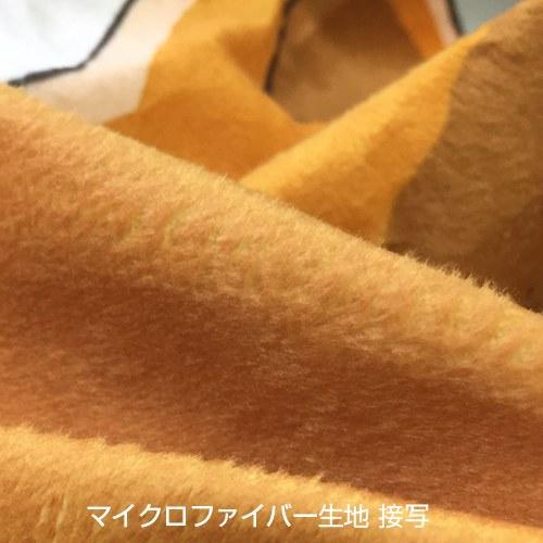 《熊巫女》推出阿夏裸体抱枕
