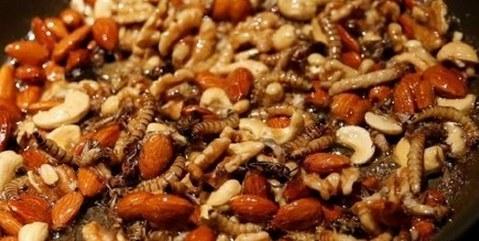 这样撩容易出事!岛国商家情人节推出昆虫大餐