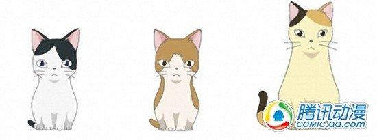 震灾复兴动画《猫栖岛》即将播出