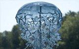 水也可以用来玩雕塑?