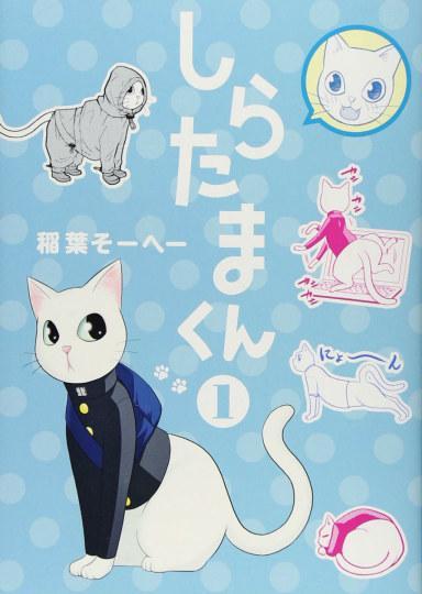 一堆猫图片卡通