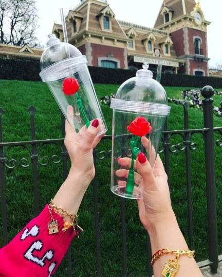 《美女与女婿》太火玫瑰杯在加州迪士尼抢疯美野兽邵洵图片