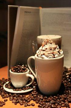 1,开业期间消费满100元赠送价值10元的矢量咖啡抵用券及图书抵用券各
