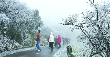 主城昨日降4℃ 金佛山仙女山今冬首降雪(图)