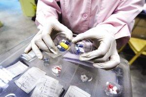 今年重庆1909人感染艾滋病 性传播成主要途径