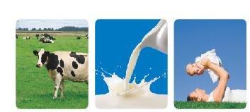 牛初乳系列