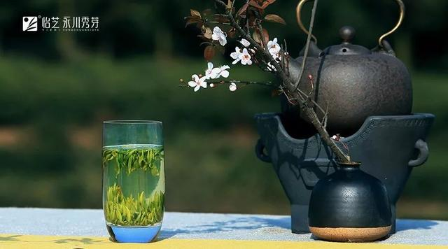 春天的仪式感:喝一杯春茶