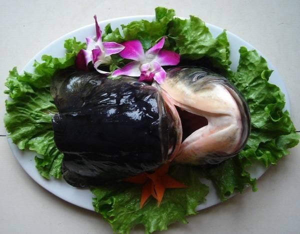 这家店的鱼头火锅你可能会吃上瘾