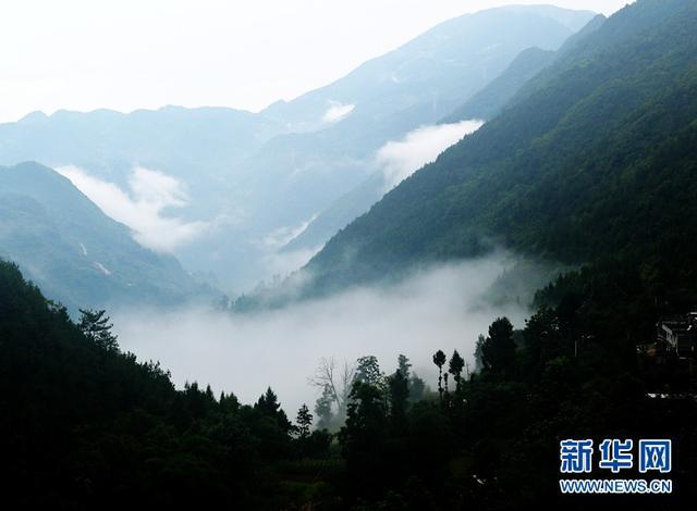 俯瞰巫山县官阳镇三岔村 白云缭绕宛如人间仙境