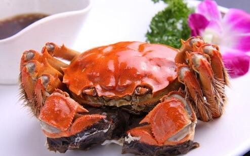 螃蟹虽美味 食用有禁忌