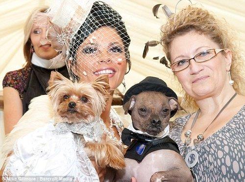 英单身女花2万英镑为狗举办婚礼 奢华令人咋舌