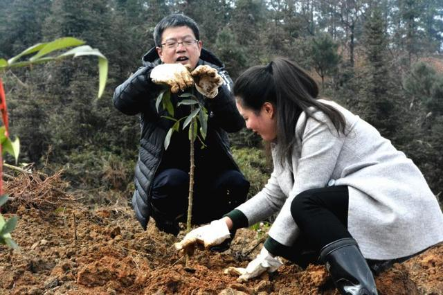 万州区文化委组织开展2018年春季全民植树活动