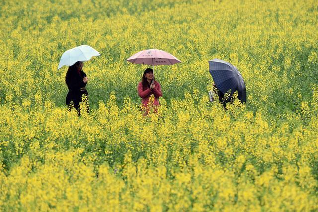 江津打造山水旅游玩法 6月主城1.5小时到四面山