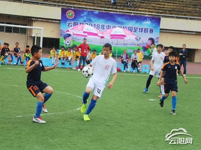 云阳中小学冠军联赛总结48支队伍竞逐年级开赛工作组足球初中图片