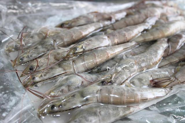 一斤冷冻虾化出三两水 冰占三成是普遍现象
