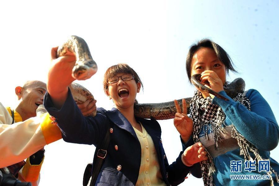 刘彤被蟒蛇生吞图片
