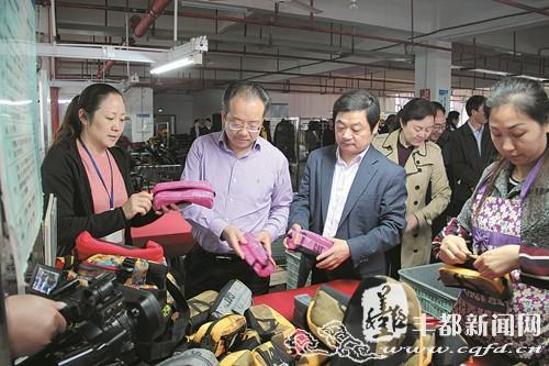 武隆县党政代表团到丰都考察