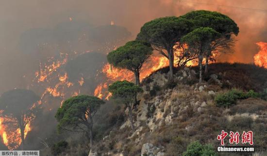 当地时间7月10日,意大利多地现丛林火灾,消防员上千次投入灭火。图为意大利墨西拿地区大火现场。