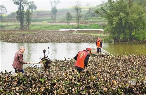 永川:投资逾10亿元 综合治理临江河流域