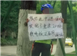 男子路边举牌求饭钱 路人质疑其身份