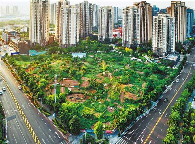 重庆92个社区体育文化公园建设拉开帷幕
