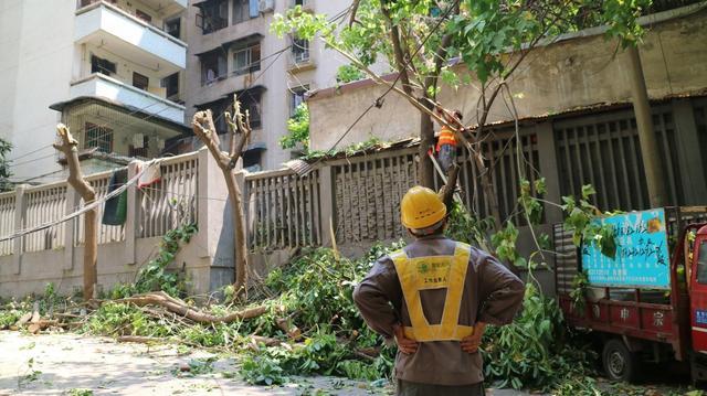 暴雨造成华新街街道8个社区停电 16辆车辆受损
