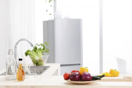 智能冰箱就看这五个关键词 你也可以是懂冰帝