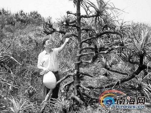 六旬汉开微博保护海南生态 引起北京业界关注