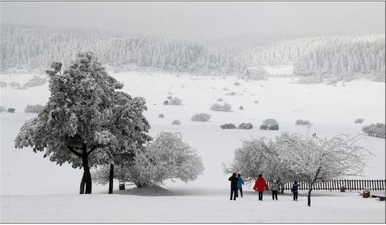 仙女山瑞雪兆丰年 武隆天降红包雨