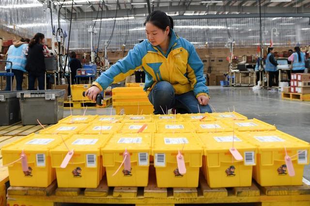 重庆苏宁双十一:物流订单量同比去年增长451.